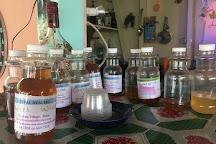 Herbal Healers, Hopkins, Belize