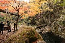 Hananuki Valley, Takahagi, Japan