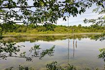 Reserve naturelle du Marais-Leon-Provancher, Neuville, Canada