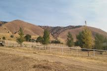 Triassic Legacy Vineyards, Tehachapi, United States