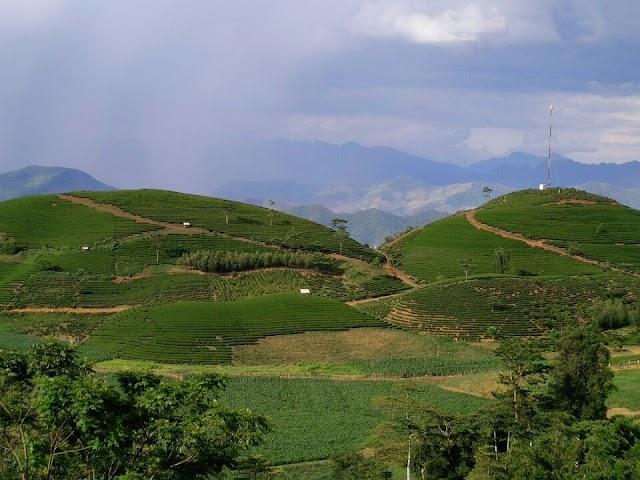 Huyện Mộc Châu