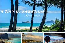 Aloha Private Tours, Honolulu, United States