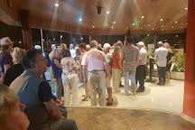 Music Hall Tavern, Playa de las Americas, Spain