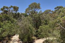 Rio Tinto Naturescape Kings Park, Perth, Australia