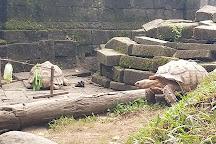 Bali Zoo, Sukawati, Indonesia