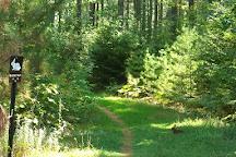 Bangor City Forest, Bangor, United States