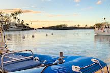Kona Snorkel Trips, Kailua-Kona, United States
