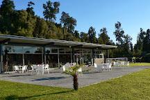 Westcoast Treetop Walk & Cafe, Hokitika, New Zealand