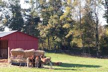 P.A. Bowen Farmstead, Brandywine, United States