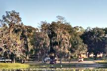 Hillsborough River, Tampa, United States