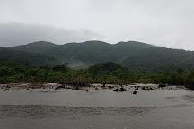 Nakama-river Protected Region, Iriomote-jima, Japan