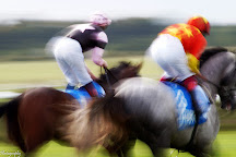 Newmarket Racecourses - Rowley Mile, Newmarket, United Kingdom