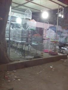 Bird Cage Shop karachi