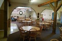 Fenn Valley Vineyards, Fennville, United States