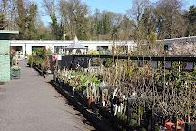 Johnstown Garden Centre, Naas, Ireland