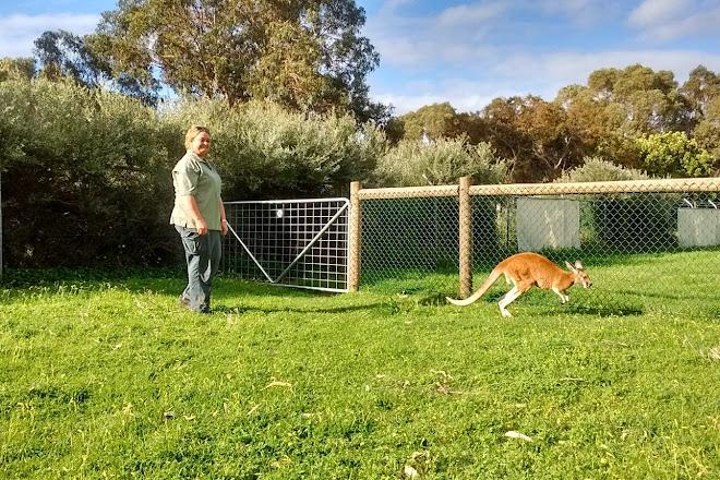 Visit Bunbury Wildlife Park on your trip to Bunbury or Australia