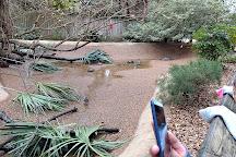 Ellen Trout Zoo, Lufkin, United States