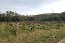 Gelynis Farm - Fruit Farm, Cardiff, United Kingdom