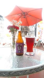 Líquido Elemento - Craft Beer House 3