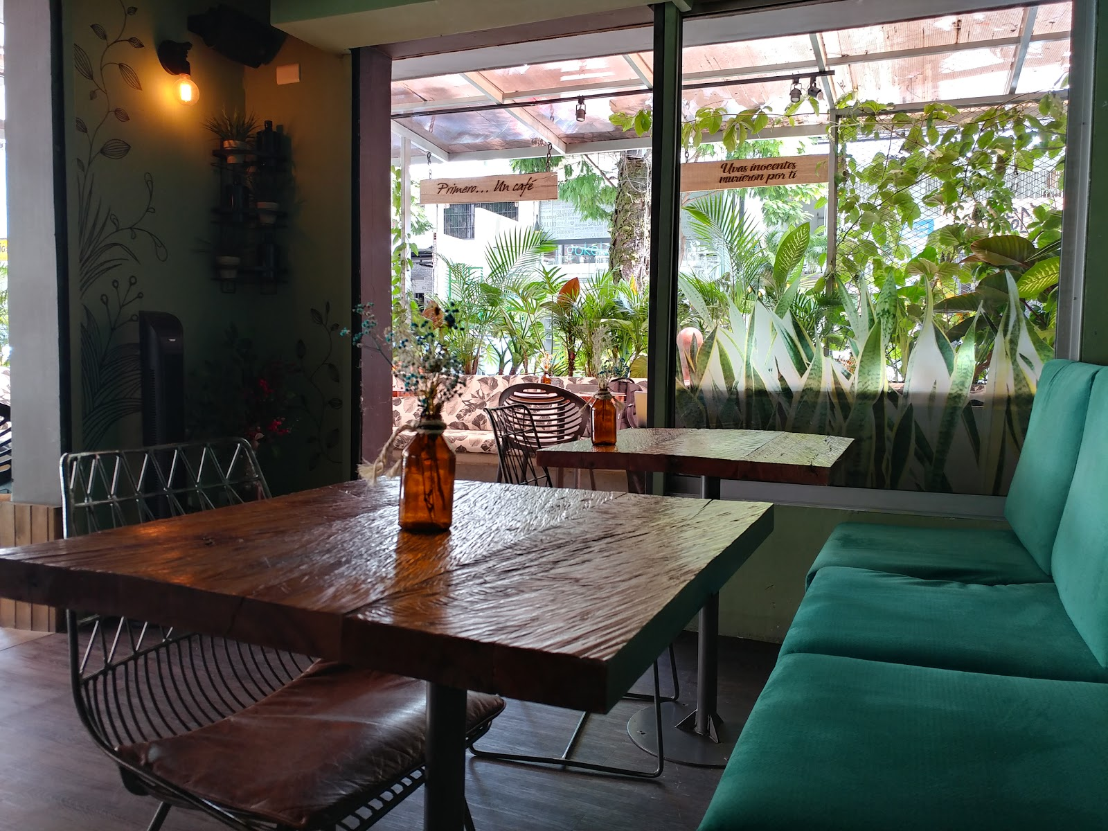 Botánika Lounge: A Work-Friendly Place in Medellin