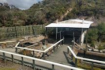 Waiariki Pools (Ngawha Springs Hot Pool), Kaikohe, New Zealand