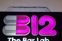 B12. The Bar Lab, Madrid, Spain