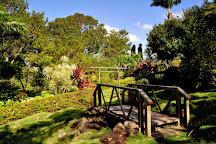 Sunnyside Garden, St. George's, Grenada