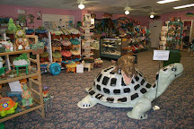 The Turtle Factory, Sneads Ferry, United States