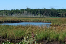 Bell's Neck Conservation Lands, Harwich, United States