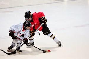 Vital Hockey Skills