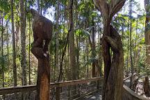 Sea Acres Rainforest Centre Port Macquarie, Port Macquarie, Australia