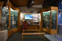 Pratt Museum, Homer, United States