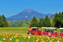 Tottori Hanakairo-Flower Park, Nanbu-cho, Japan