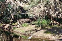 Ross and Locke Park, Little Mulgrave, Australia