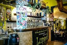 Luppolo12, Rome, Italy