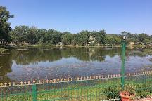 Pachmarhi Lake, Pachmarhi, India