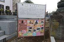 The Great Buddha of Kamagaya, Kamagaya, Japan