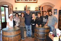 Gattavecchi Winery, Montepulciano, Italy