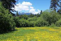 Mount Shasta City Park, Mount Shasta, United States