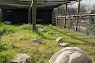 Woodside Animal Farm and Leisure Park