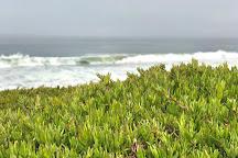 Del Monte Beach, Monterey, United States