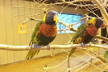 Zoo de Granby, Granby, Canada