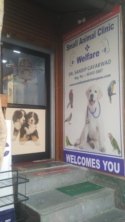 Small Animals Clinic and welfare