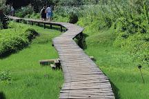 Umhlanga Lagoon Nature Reserve, Umhlanga, South Africa
