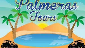 Palmeras TOURS 0