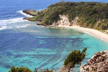 Ned's Beach, Lord Howe Island, Australia