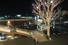 Spadium Japon, Higashikurume, Japan