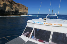 Shark Bay Dive & Marine Safaris, Denham, Australia