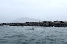 Anadyr Adventures, Valdez, United States