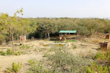 Sajjangarh Wildlife Sanctuary, Udaipur, India